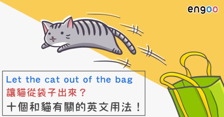 Big_0225_let_cat_out_3_%e5%b7%a5%e4%bd%9c%e5%8d%80%e5%9f%9f_1